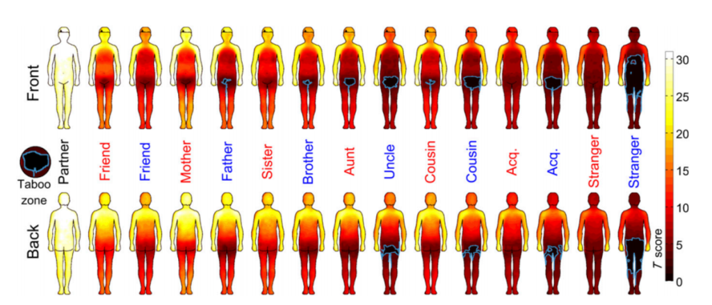 "Figure via Topography of social touching depends on emotional bonds between humans The areas outlined in blue are the ""taboo zones,"" which are regions that person group is not allowed to touch."